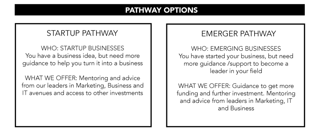 Pathway Options - Emerge Investments
